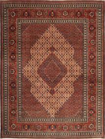 セーラ 絨毯 XEA1912