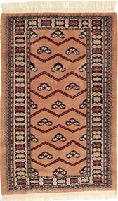 Bokhara / Yamut-matto AHCA29