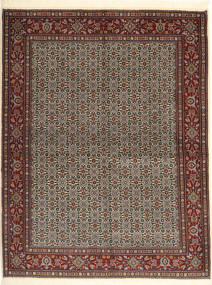 Koberec Moud Sherkat Farsh AHCA155