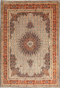 Moud carpet AXVP603