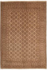 Afghan carpet NAZD352