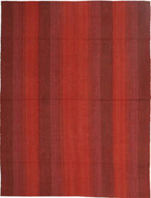 Kilim Modern rug EDA410