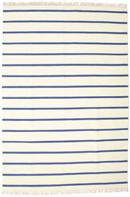 Dhurrie Stripe - White / Blue rug CVD16265