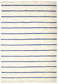 Dorri Stripe - White / Sininen-matto CVD16269