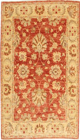 Ziegler tapijt AXVZA186