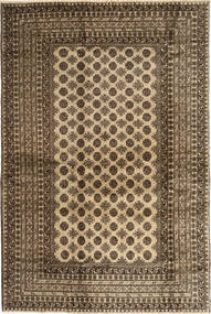 Afghan Natural carpet ABCX1460