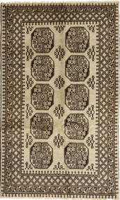Afghan Natural carpet ABCX1491