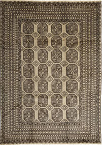 Afghan Natural carpet ABCX1496