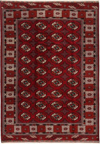 Turkaman carpet TBZZO250