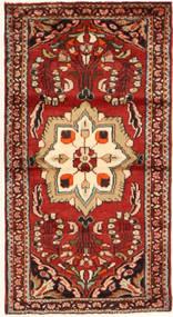 Hamadan carpet AXVZL700