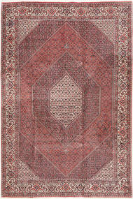 Bidjar carpet AXVZM16