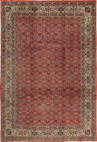 Sarouk carpet AXVZC1162
