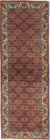 Bidjar carpet AXVZL144