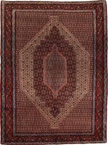 Senneh carpet AXVZL4448