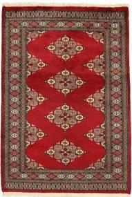 Pakistan Bokhara 2ply carpet SHZA99