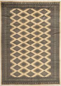 Pakistan Bokhara 2ply tapijt SHZA197