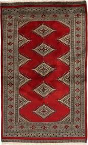 パキスタン ブハラ 2ply 絨毯 SHZA24