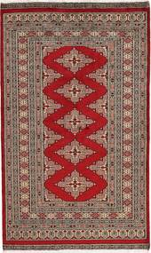 パキスタン ブハラ 2ply 絨毯 SHZA20