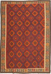 Kilim Maimane szőnyeg XKG276