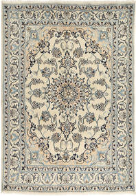 Nain carpet RXZI261