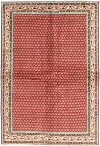 Arak carpet AXVZL19
