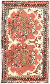 Rudbar carpet AXVZL4268