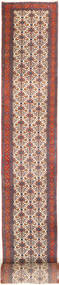 Koliai Rug 95X970 Authentic  Oriental Handknotted Hallway Runner  Brown/Light Brown (Wool, Persia/Iran)