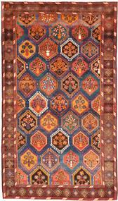 Lori szőnyeg AXVZX4034
