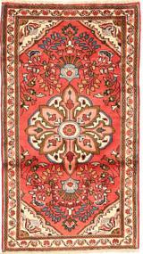 Rudbar carpet AXVZL4267