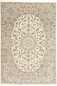 Nain 6La Signature : Akhavan tapijt AXVZZH102