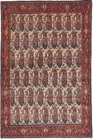 Senneh szőnyeg AXVZZH104