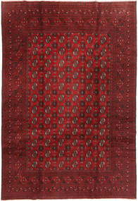 Tappeto Afghan XEA545