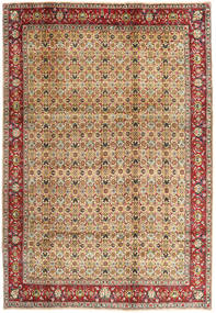 Tabriz carpet AXVZX4049
