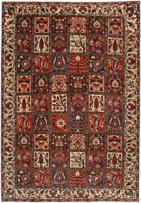 Bakhtiari Patina carpet AXVZX3888