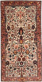 バクティアリ パティナ 絨毯 150X303 オリエンタル 手織り ベージュ/濃い茶色 (ウール, ペルシャ/イラン)