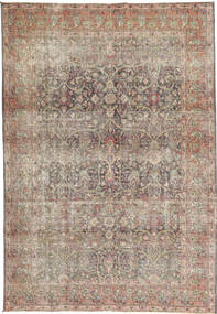 Tapis Colored Vintage AXVZX1825