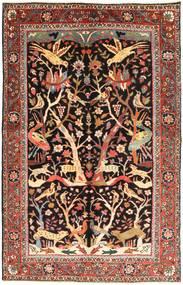 Bakhtiar tapijt AXVZZX2132