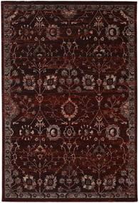 Zanjan - Dark_Wine Rug 200X300 Modern Dark Brown/Dark Red ( Turkey)