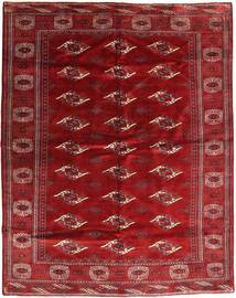 Turkaman tapijt AXVZZX3171