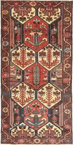 Hamadan Patina carpet AXVZZX2770