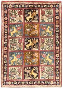 Bakhtiar szőnyeg AXVZZX106