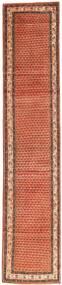 サルーク 絨毯 AXVZZZF1259