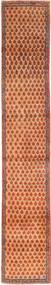 Sarouk carpet AXVZZZF1120