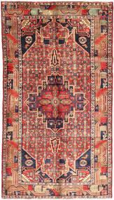 Koliai szőnyeg AXVZZZO799