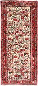 Rudbar carpet AXVZZZO734