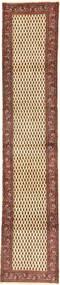 Sarouk carpet AXVZZZO1344