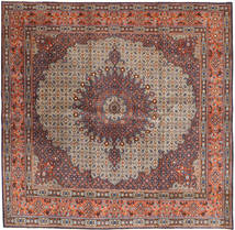 Moud carpet AXVZZZW119