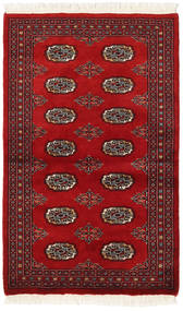 Pakistan Bokhara 2ply matta RXZN228
