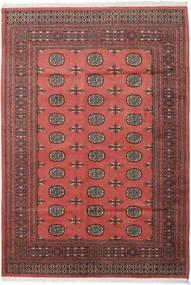 Pakistan Bokhara 2ply matta RXZN481