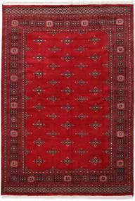 Pakistan Buchara 2ply Teppich RXZN451
